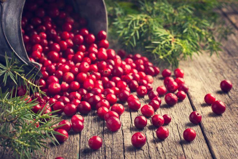 cranberries yeast infection