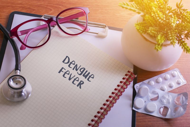 Stethoscope on note book with Dengue Fever words as medical concep