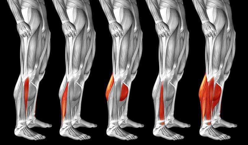 inflammation tendonitis