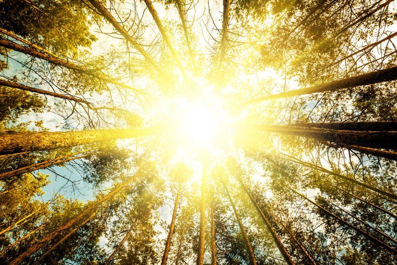 sunlight anxiety