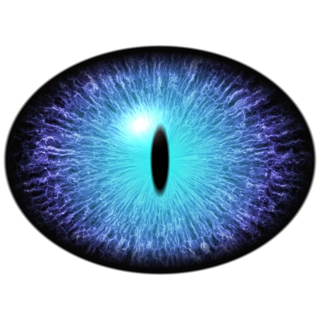 do i have glaucoma