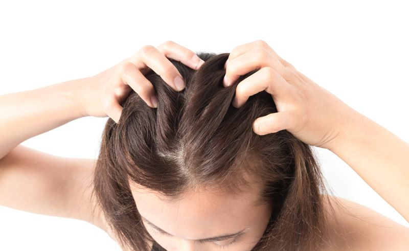 breakdown head lice