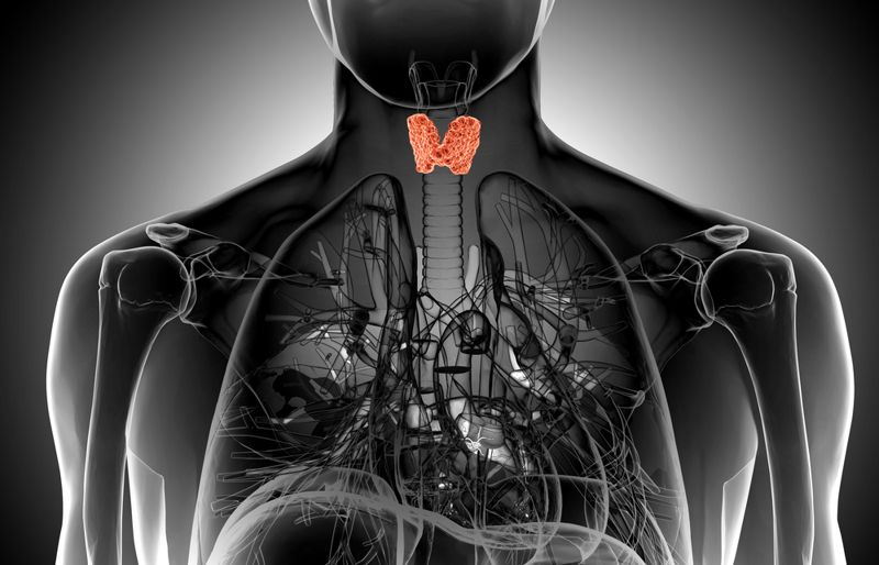 Signs of Thyroid Cancer lump