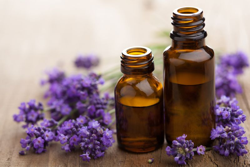 organic Remedies for Scabies