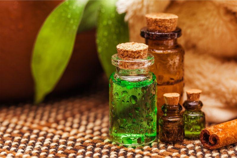 essential oils health thrush