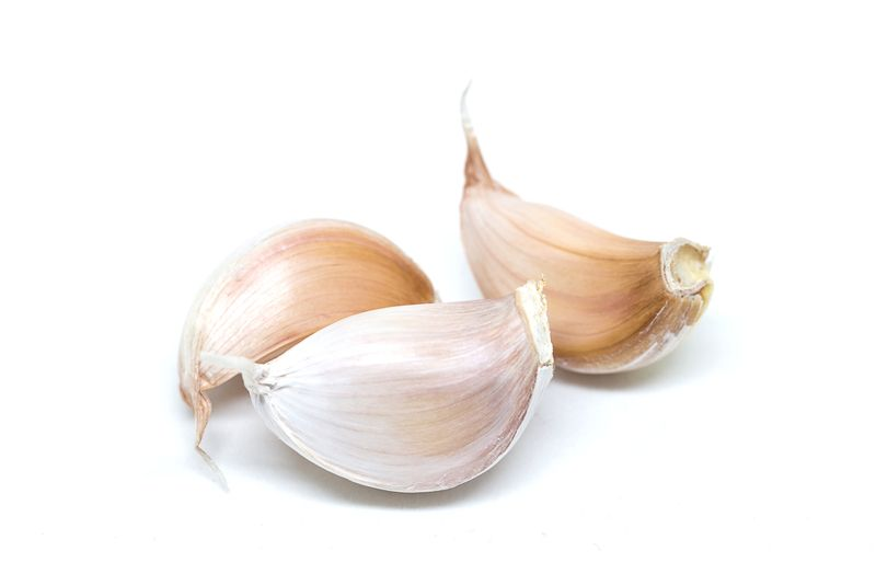 garlic Tinnitus