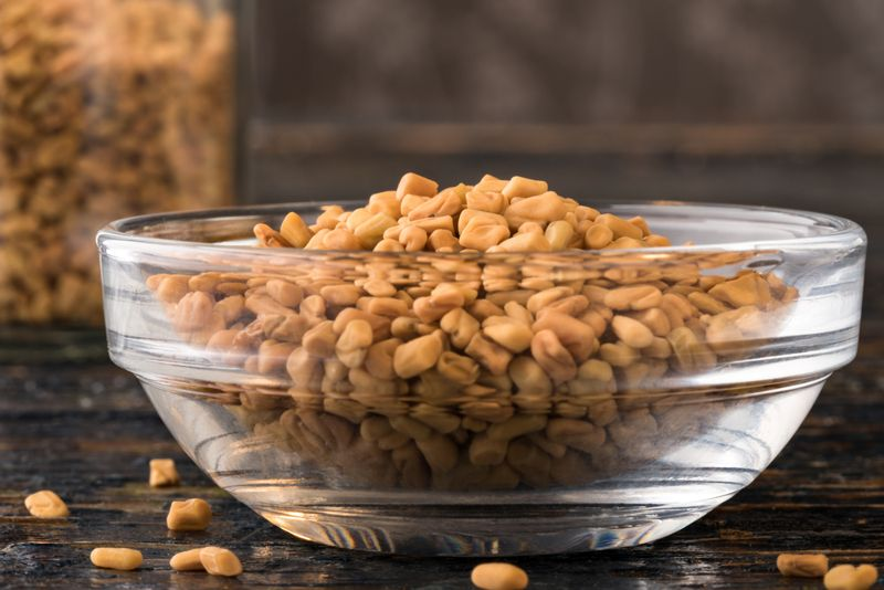 seeds Home Remedies for Pneumonia