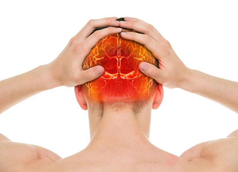 Yellow fever brain