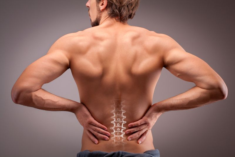 exercises for the lower back pains