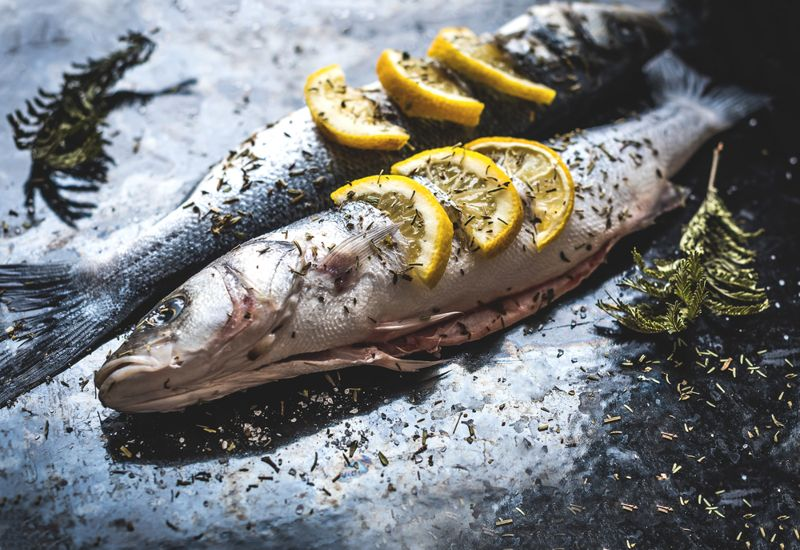 seafood foods to improve pregnancy