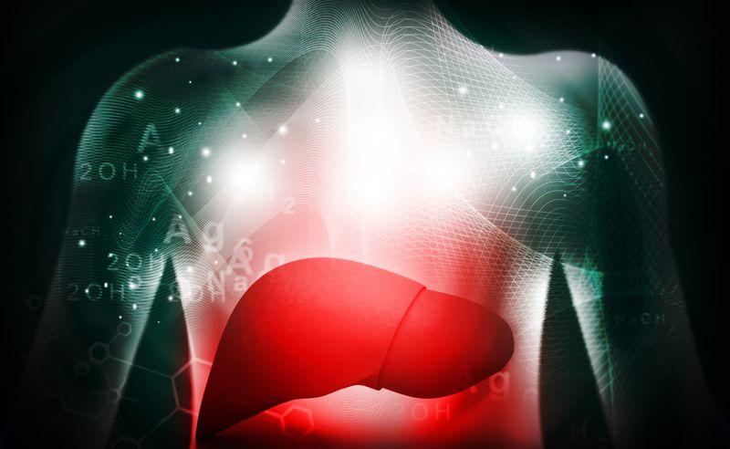 liver enzymes mono