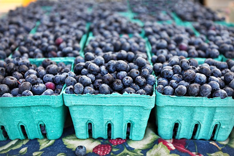 blueberries Superfruits