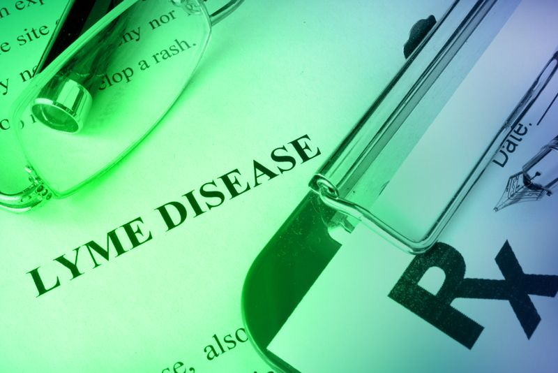 10 Treatments for Lyme Disease