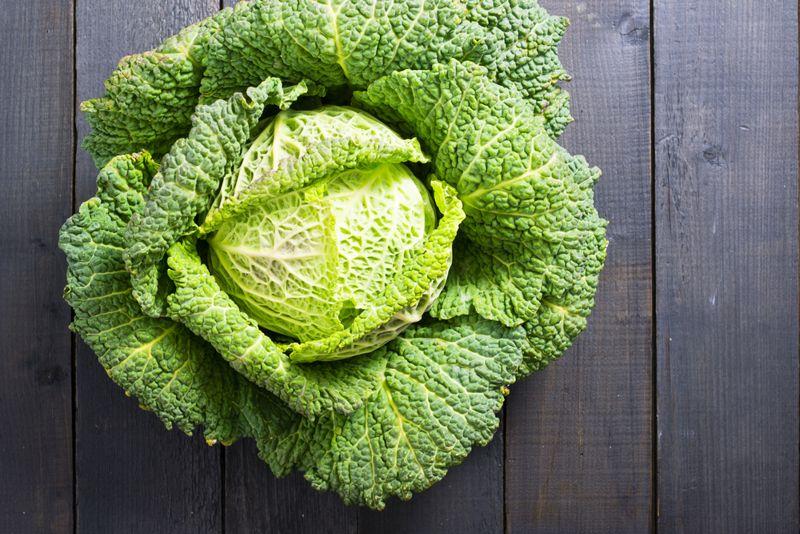 bone health Cabbage