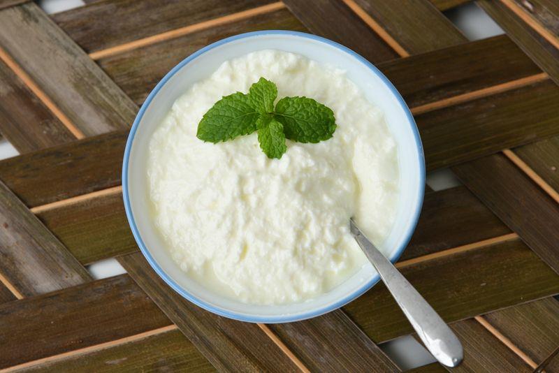 dairy probiotics