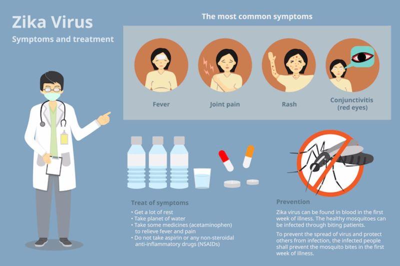 zika virus symptoms and treatment