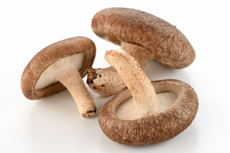 blood pressure mushrooms