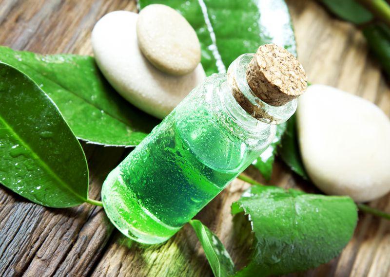 tea tree oil Lichen