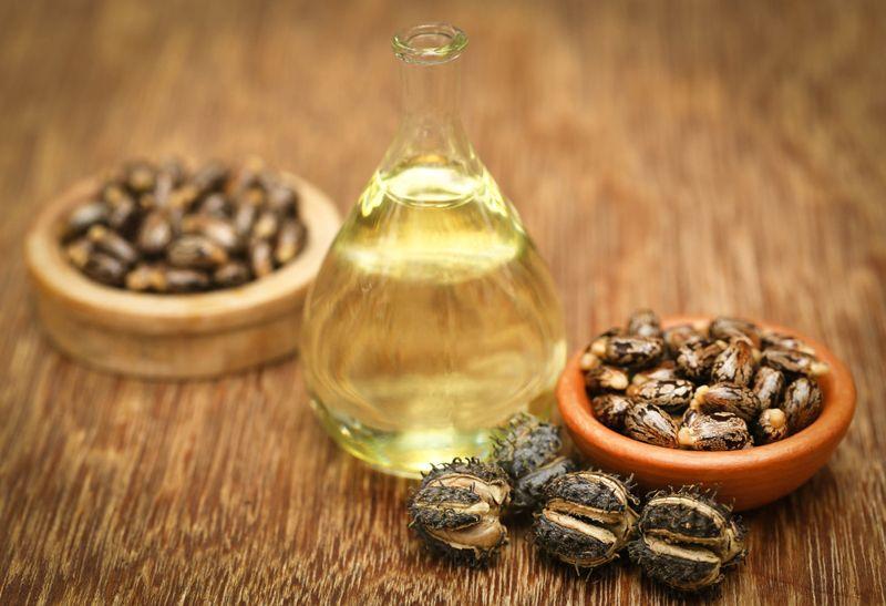 castor oils toxic
