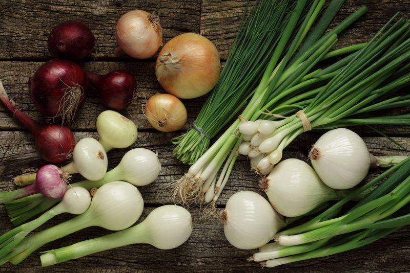 foods Osteoarthritis