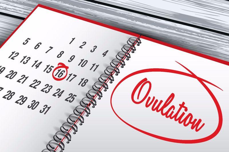 ovulation infertility