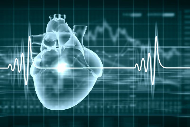 10 Frequently Asked Questions About an Echocardiogram