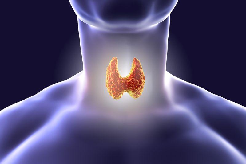 Improve Thyroid Function