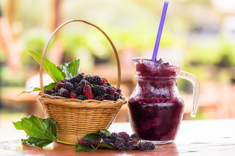 immunity Mulberry