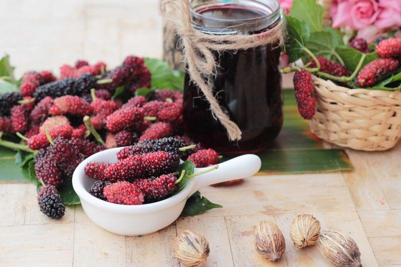 vitamins Mulberry