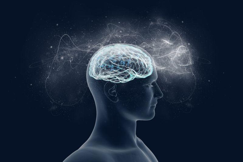 Become a Brain