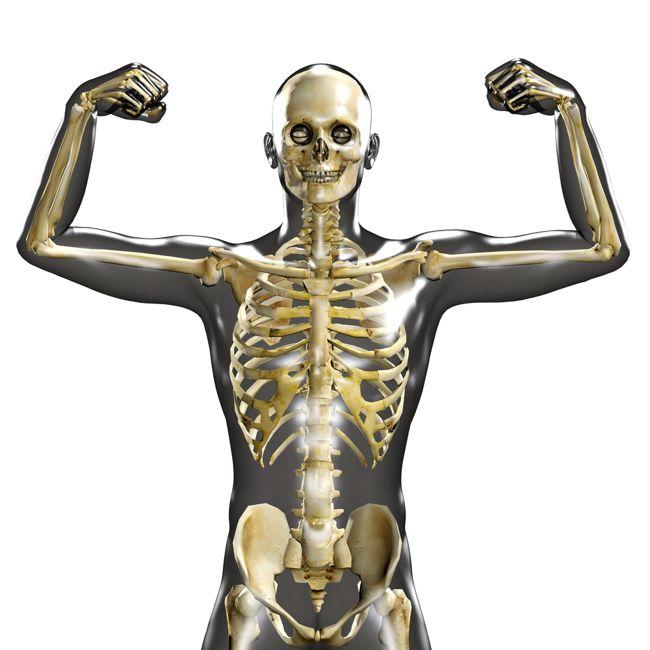 Bone Strengthening
