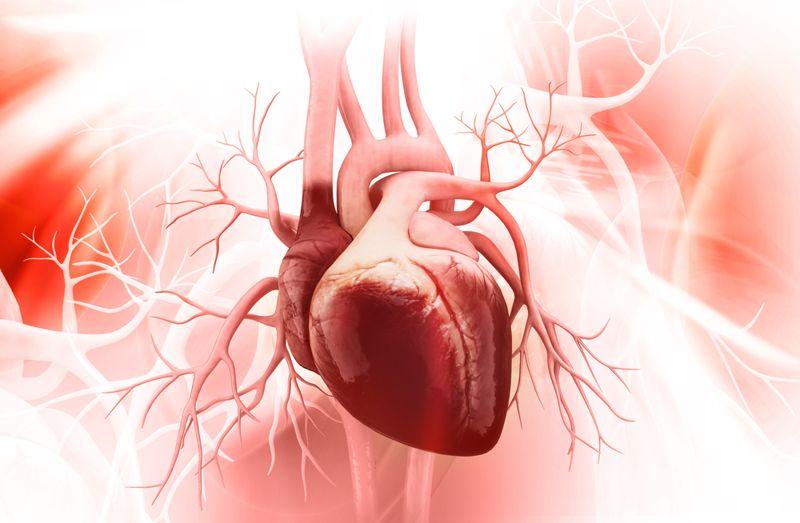 Boosts Heart Health