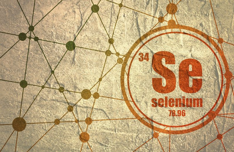 Sardines are Rich in Selenium