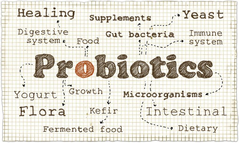 Acts as a Probiotic Kvass