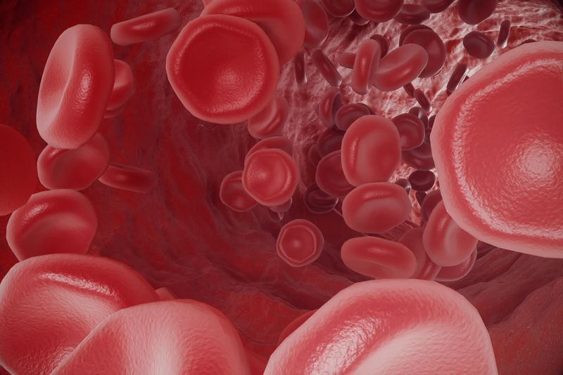Boost your blood health