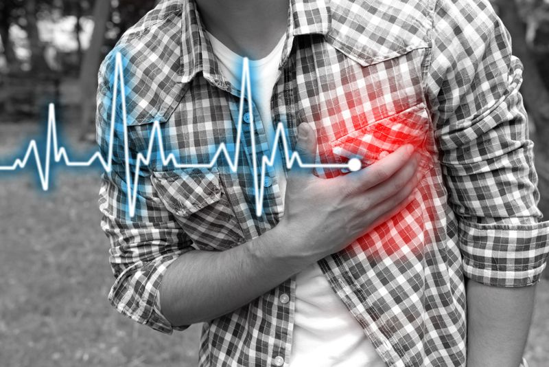 Cardiovascular Health Also Improved Schisandra