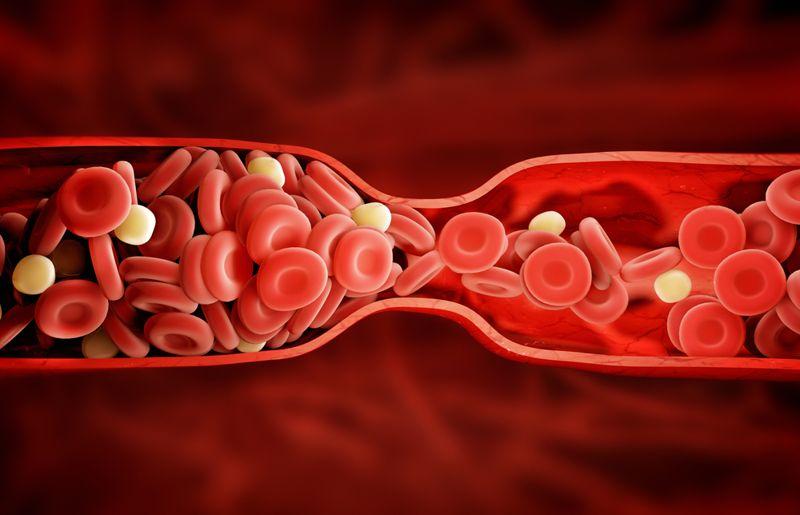 Encourages Blood Clotting