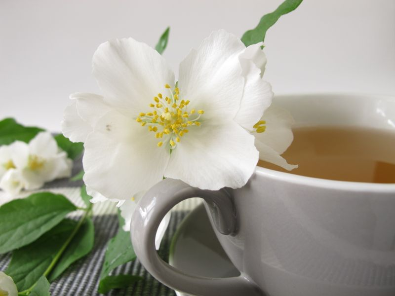 Good for both emotional and physical health White tea