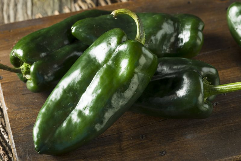 Helps with Weight Loss Poblano