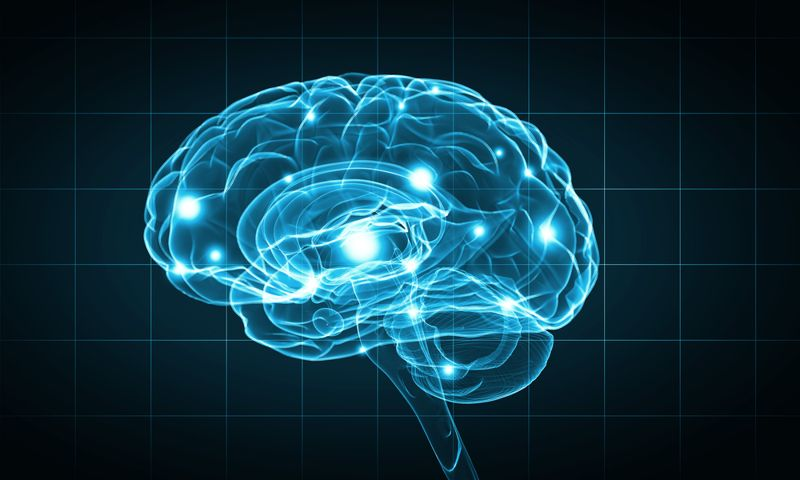 Improve cognitive function