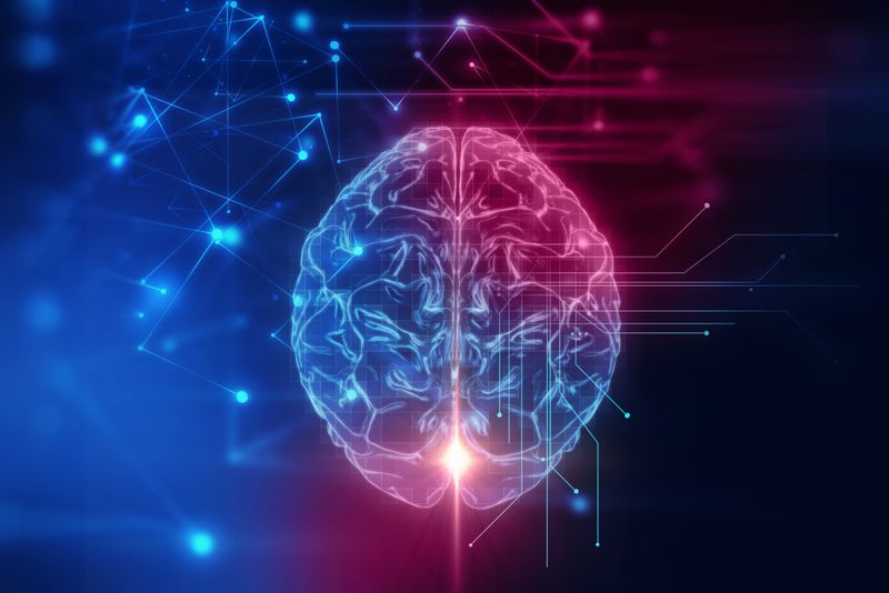 Promotes Proper Brain Health