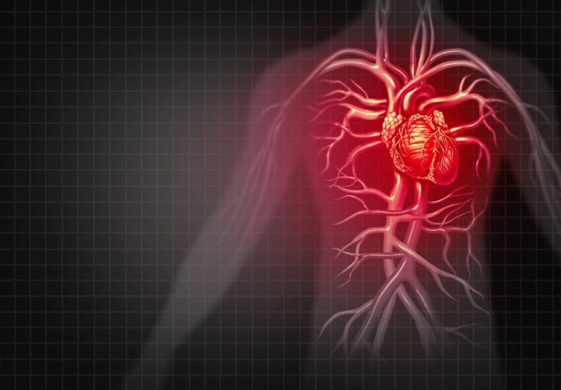 effects of Hypovolemic shock
