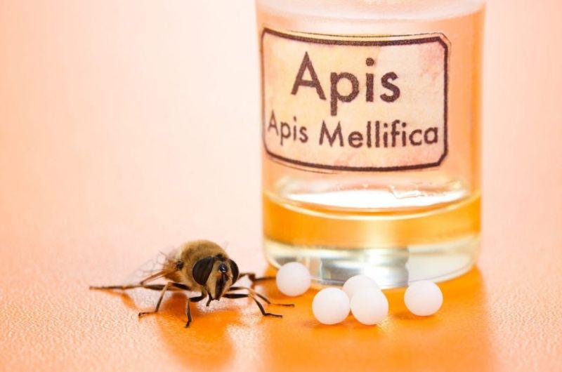 bee venom apitherapy