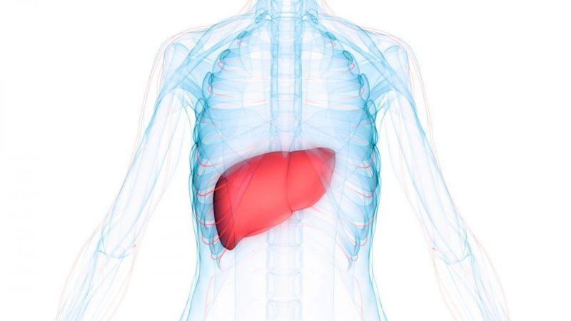 liver disease vision