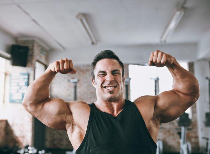 muscle mass lamb helps