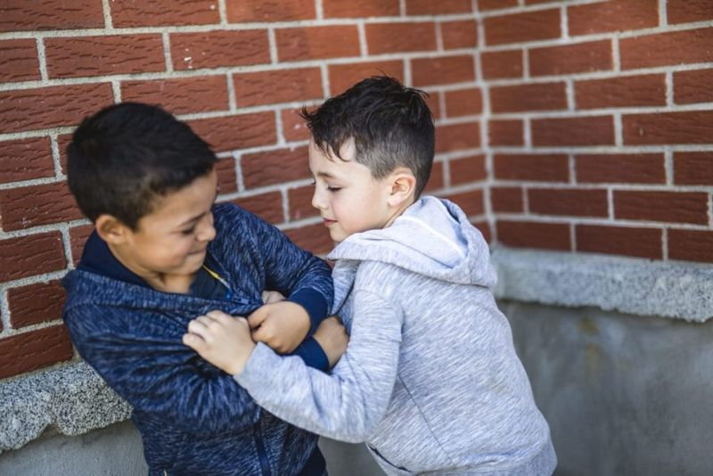 aggression behavior