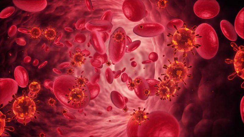 low hematocrit levels