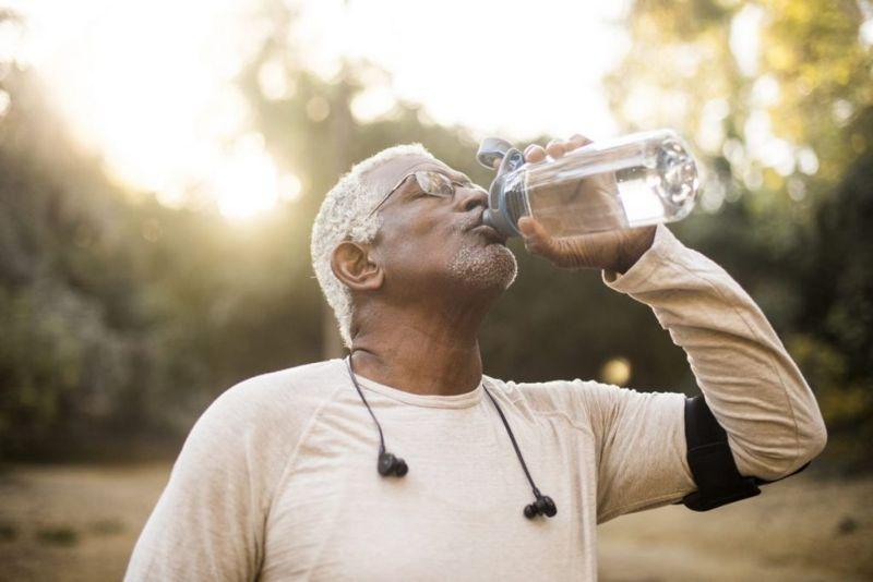 hydration excretory system