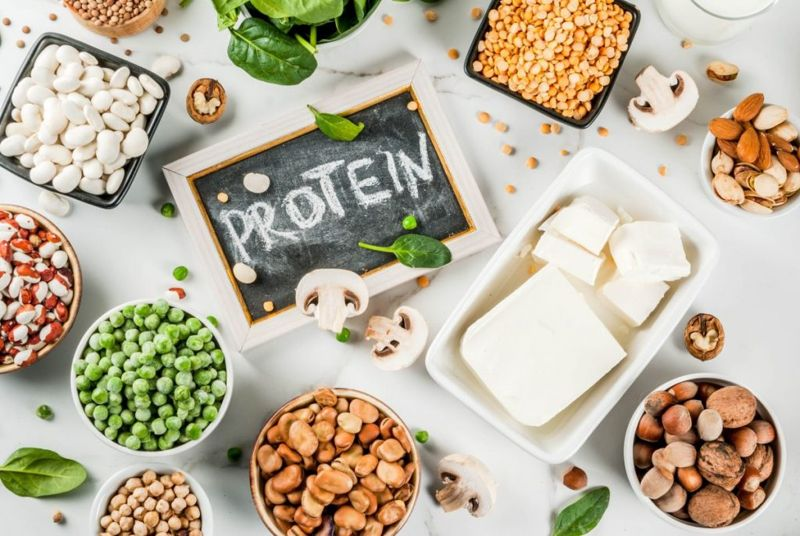 protein rutabaga