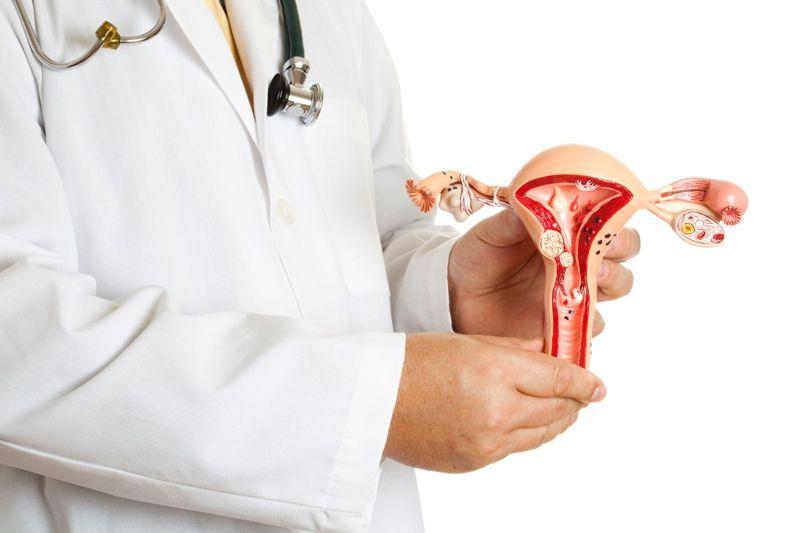 uterus primary ovarian insufficiency